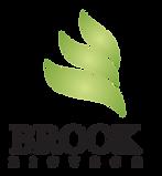 final Brook Biotech logo-01 (1).png