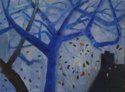 blauwe bomen 2