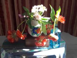 foto tulpen