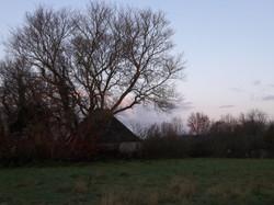 foto boerderijtje wieringen