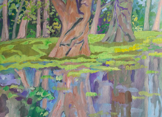 Moerascypressen in een plas water (Vondelpark)