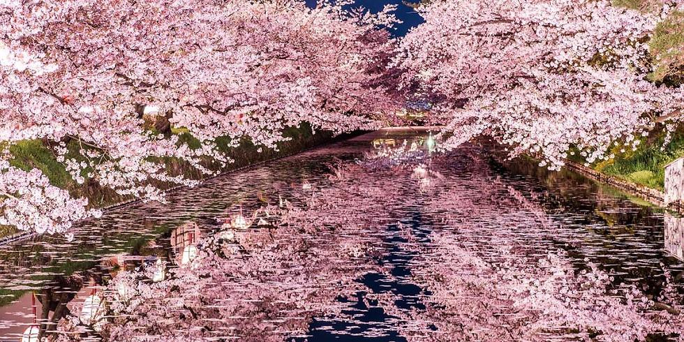 5/1(六) 春の蘭本,百花齊放一抹香 - 紐西蘭 & 日本微型自然酒展