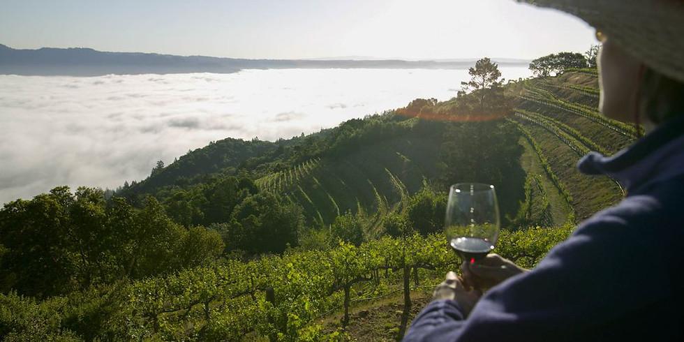 山與海洋與酒 - 北西班牙之旅