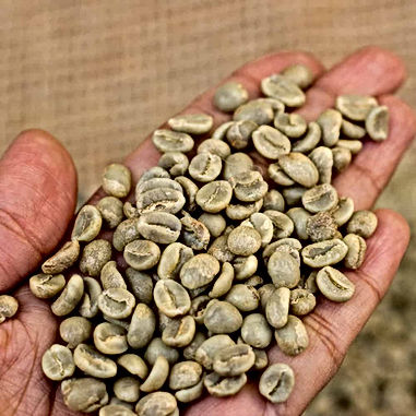 Green Robusta Coffee Beans.jpg
