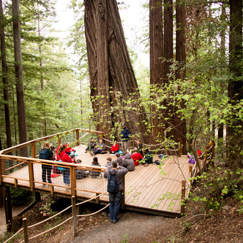 Alliance Redwoods Conference Grounds: Camp & Retreat Center