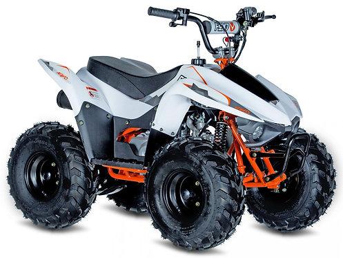 KAYO FOX 70 ATV