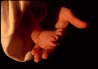 E_foot.jpg