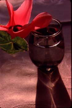 flower_glass.jpg