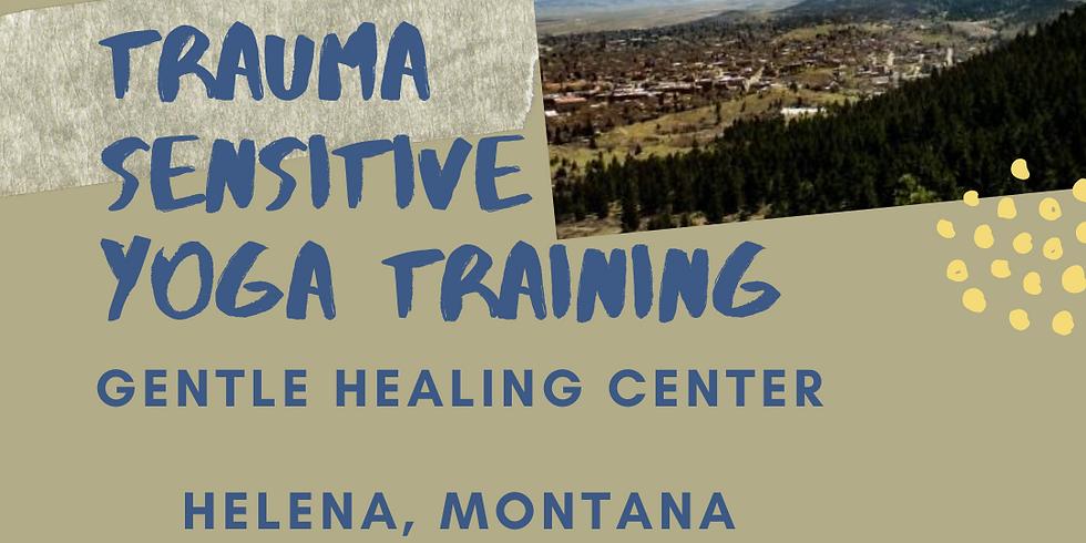 20 Hour Online TCTSY Foundational Training (Montana)