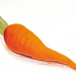 Carrot By Gina Rizzo
