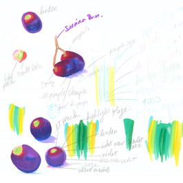 Grape Study By Gina Rizzo