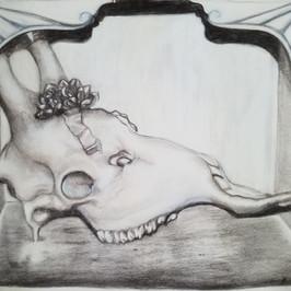 Giraffe Skull By Gina Rizzo