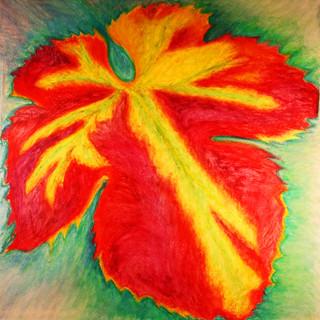 Grenache Leaf By Gina Rizzo