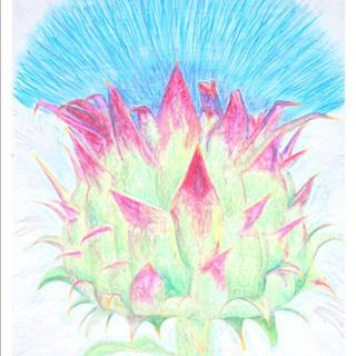 Artichoke Blossom By Gina Rizzo