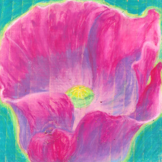 Hot Pink Poppy By Gina Rizzo