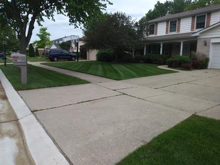 lawn A .jpg