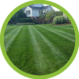 v2-Lawn Icon.png