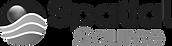 Spatial-Source-logo_edited.png