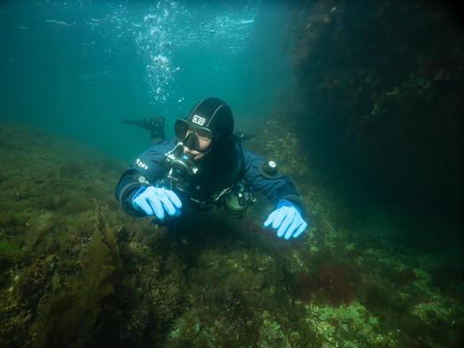 Dyk och livsnjutning vid Smögen
