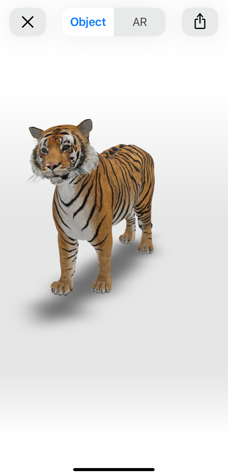 Google AR Tiger in 3D