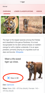 Google AR Tiger Search