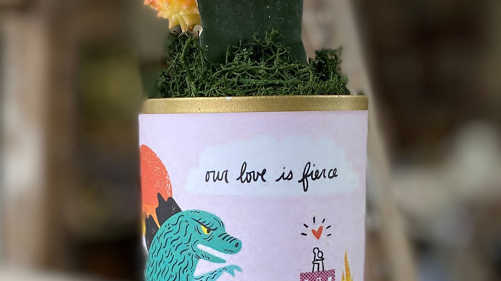 """Moon Cactus """"Our Love Is Fierce"""""""
