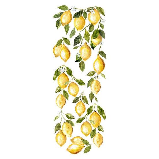 IOD Iron Orchid Designs Transfer Lemon Drops
