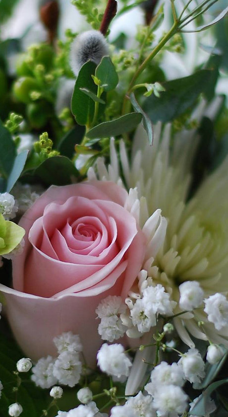 Dini and Co Fresh Flowers_edited.jpg