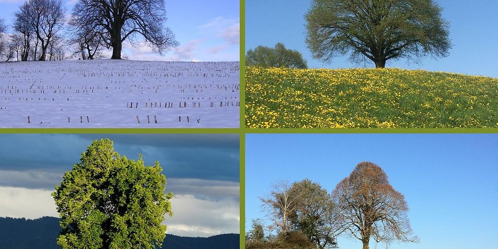Vier-Jahreszeiten-Wanderungen (4)