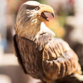 Eagles are the most powerful Bird of Prey, in my opinion.  I love carving them.