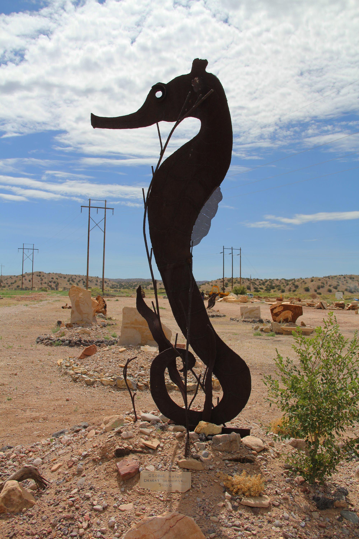 8. Desert Seahorse