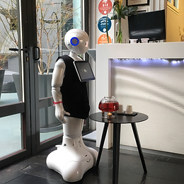 hotel robot promotion information point