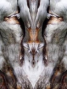 Bilde av Nature Ånder, Eventyrbilde