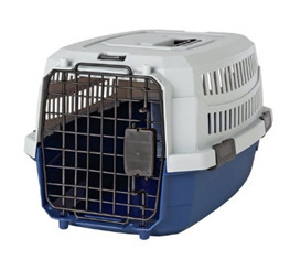 Accustom your cat to its cat carrier