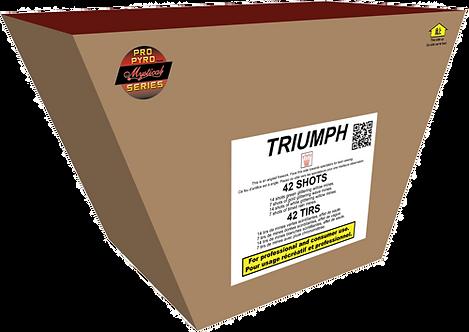 TRIUMPH PRO