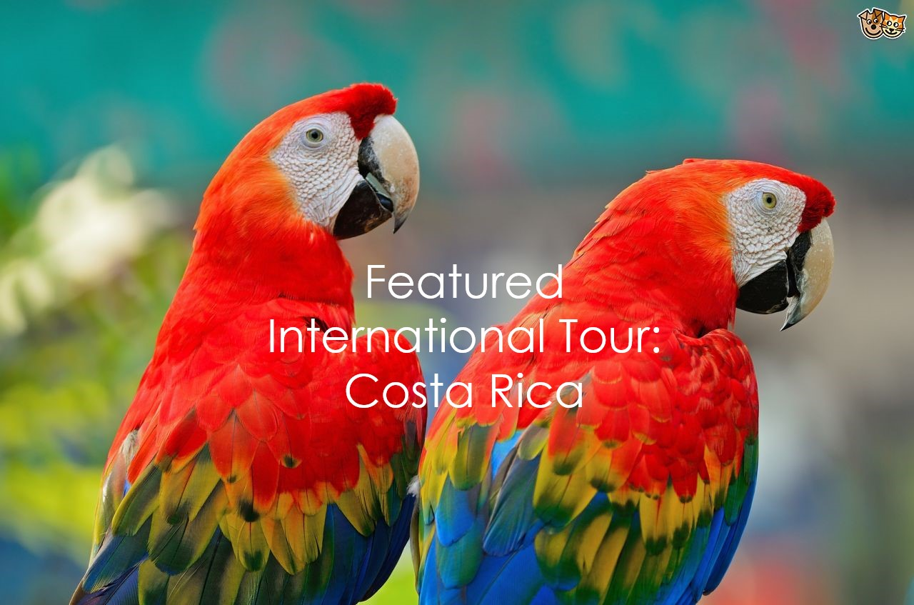 Featured - Costa Rica with text
