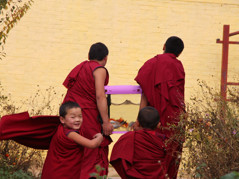 Young monks in Wutun Monastery, Rebkong