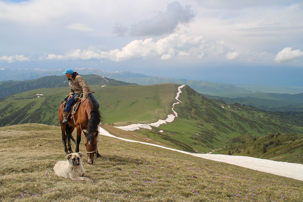 a man with his dog and horse, Jyrgalan valley, Kyrgyzstan