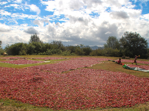 """""""Chilli village"""", on the way from Kalaw to Inle Lake"""