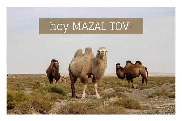 Mazal Tov #2