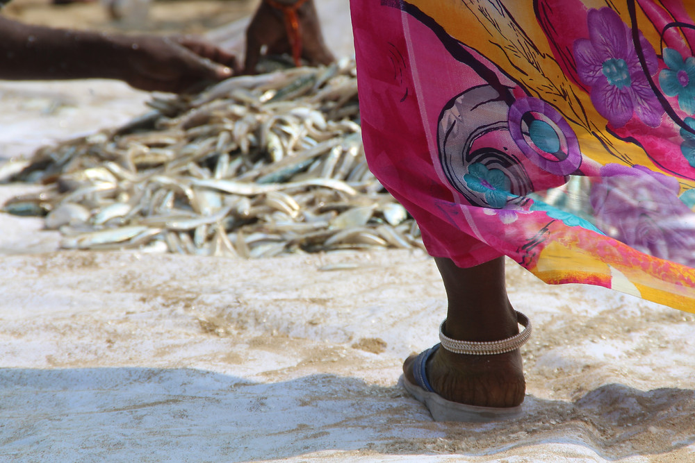 רגל של אישה הודית לצד ערימת דגים