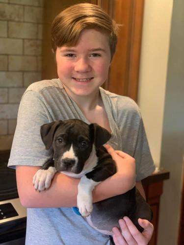 Zoey Adoption Day.jpg