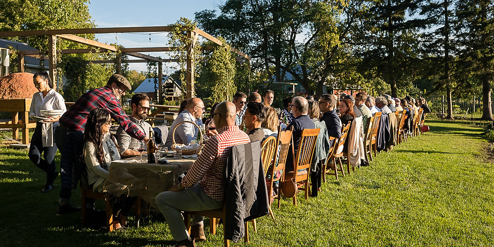Harvest Experience - Lunch version - September 26