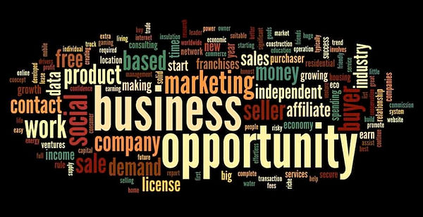 types-of-business-opportunities.jpg
