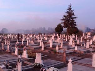 Die Gräber der Vorfahren digital finden