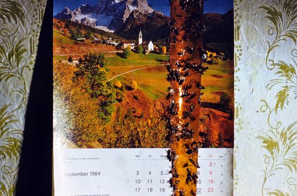 Kalender und Mückenpapier aus Deutschland in der Banater Küche 1984