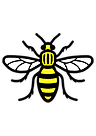 manchesterbee.png