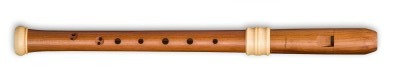 Mollenhauer Dream Edition 4318 Alto in Plumwood with maple rings