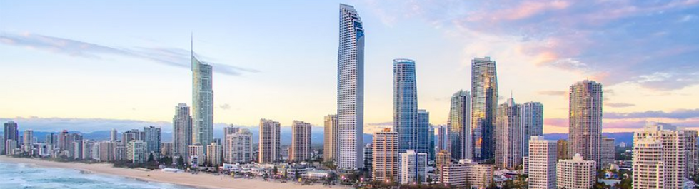 termite reports plus building inspection Gold Coast