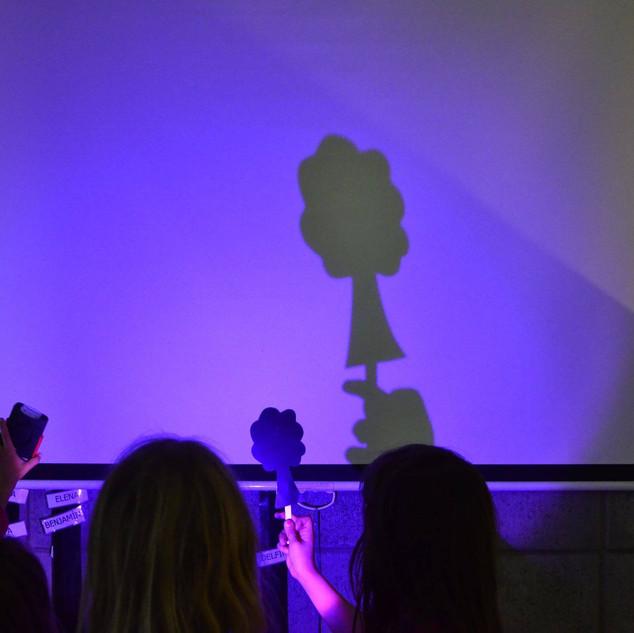 Narraciones con sombras